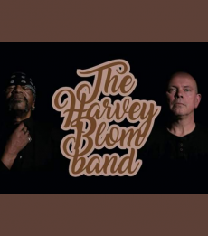 The Harvey Blom Band - Live & Stream